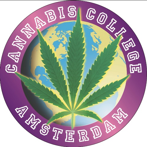 cannabis college coffeeshop best friends amsterdam