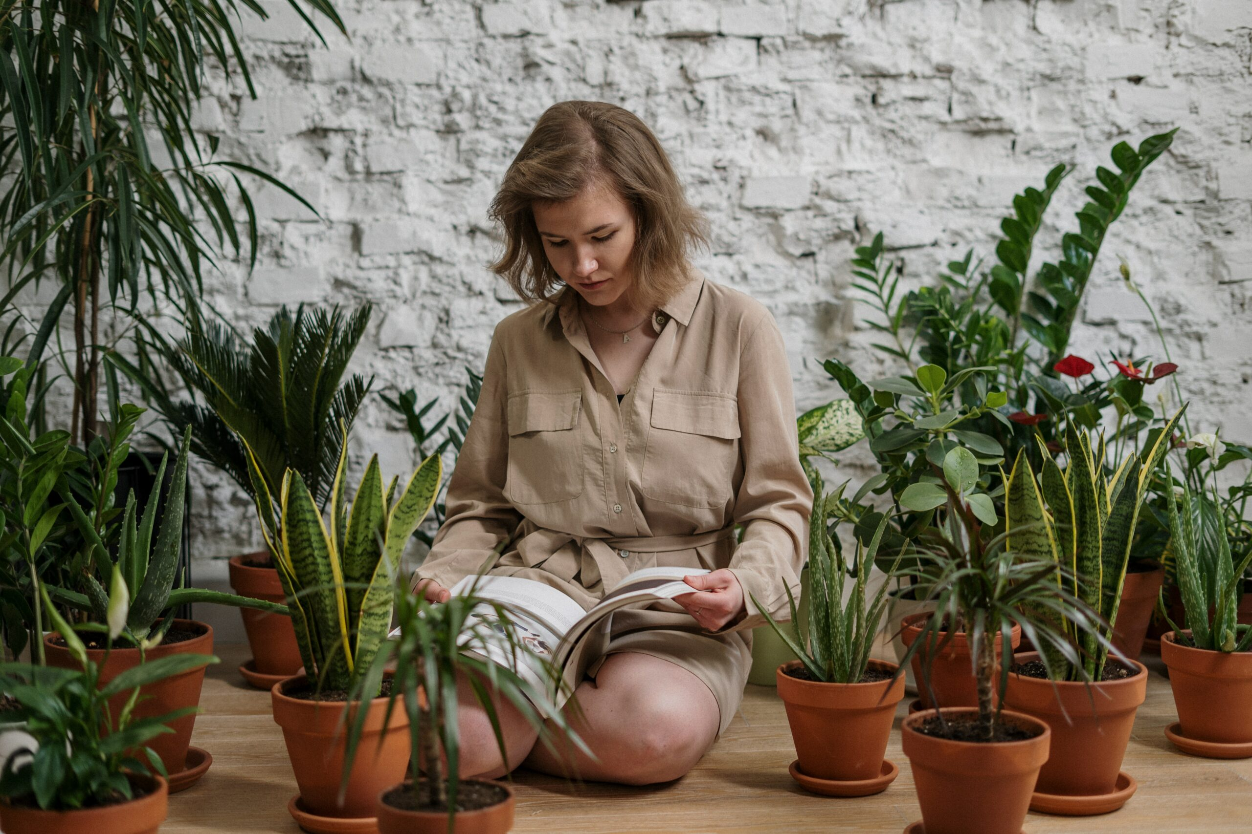 book about plants
